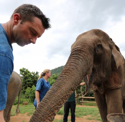 Half Day visit and Support at Eco Elephant Care