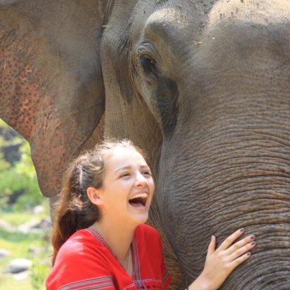 2 DAYS 1 NIGHT DE'KASHOR ELEPHANTS SANCTUARY PROJECT