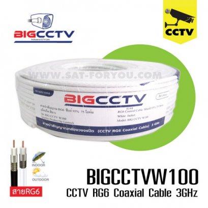 สายกล้องวงจรปิด BIG CCTV 95% 100ม. ขาว