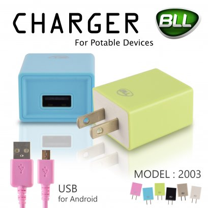 Wall Charger 2A BLL2003