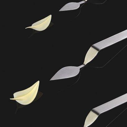 CH5 PAVONI Chocolate Decoration Tool: Leaf (Medium)