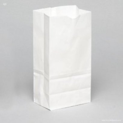8372 White Stand Paper Bag 13*8*22 cm@100