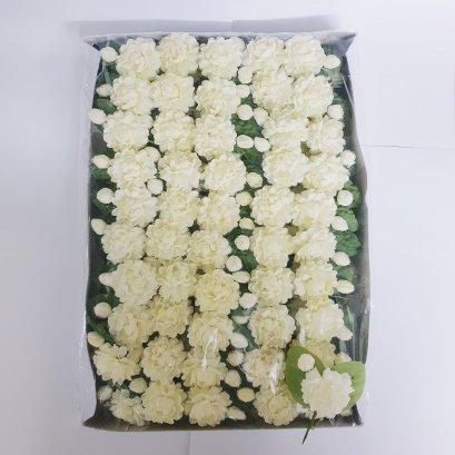 ดอกมะลิ ติดเสื้อ (กล่องละ 100 ดอก)