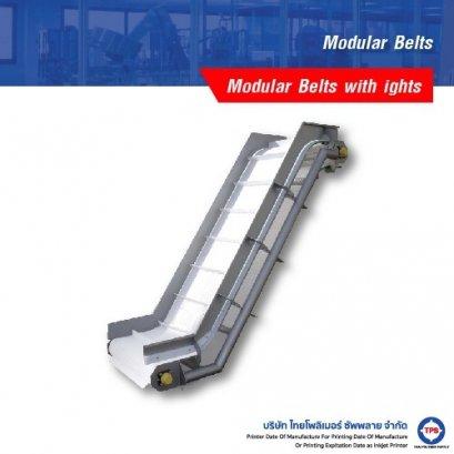 Modular Belts