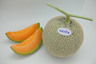 เมล็ด ซากุระ (100s)