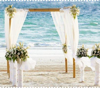 Wedding package Maecenas