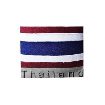 ปักธงชาติไทย