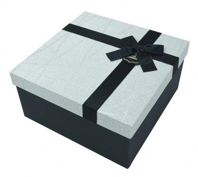 กล่องสำเร็จรูป สีเงิน (กลาง)