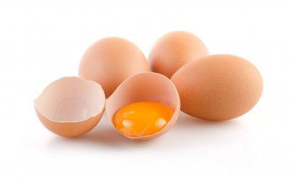"""โคลีนในไข่ไก่ป้องกัน """"อัลไซเมอร์"""""""