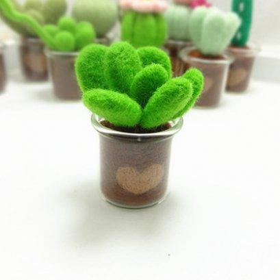 Kit set Felting cactus สูงประมาณ 4 - 6 cm.ราคาชุดละ