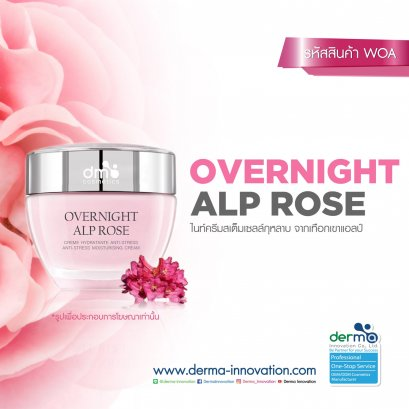 Overnight Alp Rose