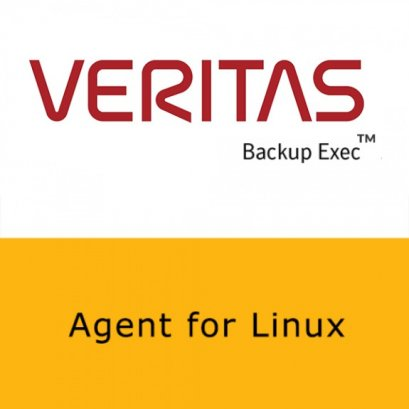 Veritas Agent for Linux