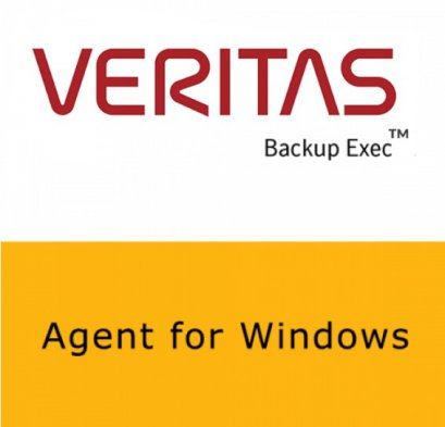 Veritas Agent for Window