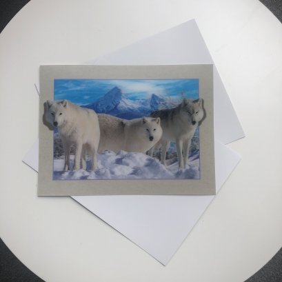 3d and 5d pictures lenticular of wolves