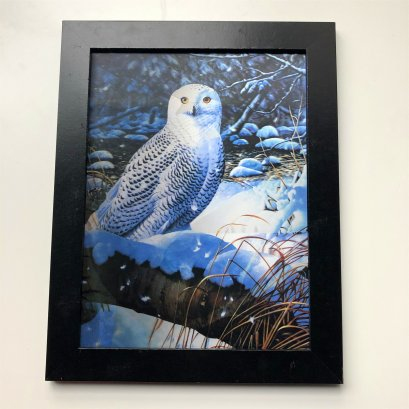 3d animal pictures 3d bird lenticular poster 3d picture effect