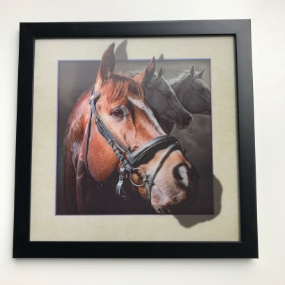 5D Animal picture horse lenticular picture posters customized