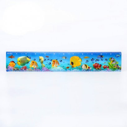 Factory Customized High Quality Rulers 3D lenticular Ruler