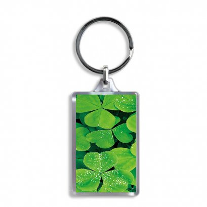 High quality gift/crafts lenticular 3d plastic keychain of beautiful scenery