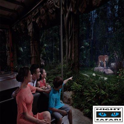 ทัวร์สิงคโปร์ไนท์ซาฟารี (Singapore Night Safari)