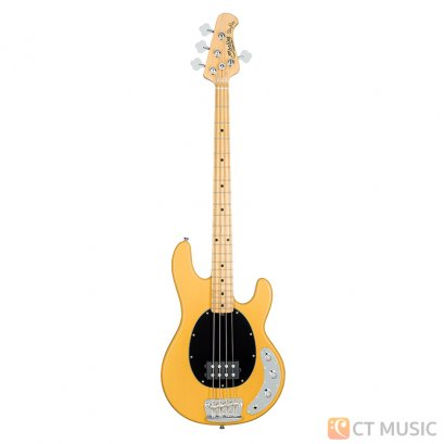Bass Sterling by Music Man Stingray Classic RAY24CA