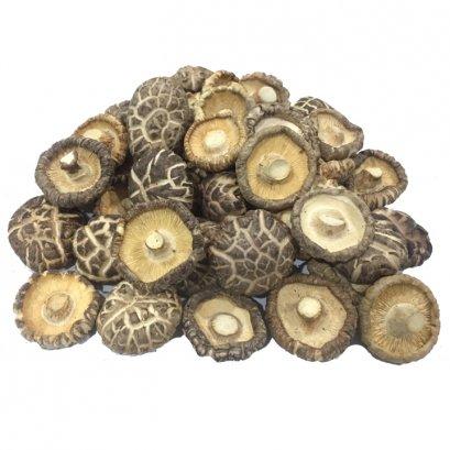 Japanese Shiitake Mushroom A4