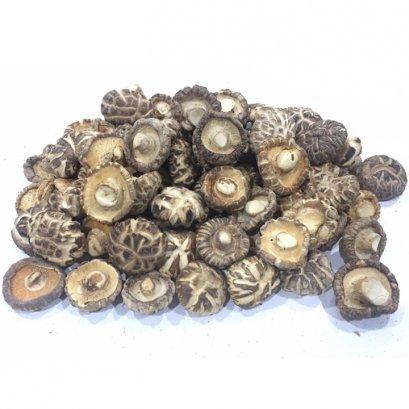 Japanese Shiitake Mushroom A3