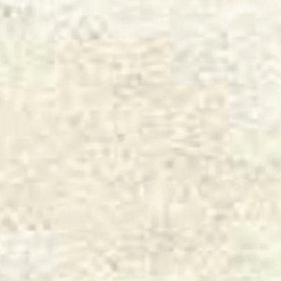 SAYLEE -  WHITE - SG4N6D NATURASL