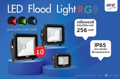LED Flood RGB 10, 20, 30w 220V