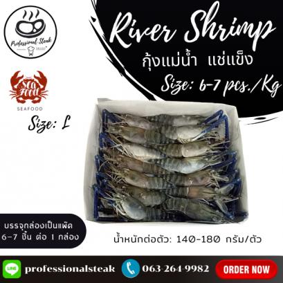 กุ้งแม่น้ำทั้งตัว (River Shrimp) 6-7 PCS/KG. NW 100 % (140-180 G./PC),(6-7 PCS/KG)