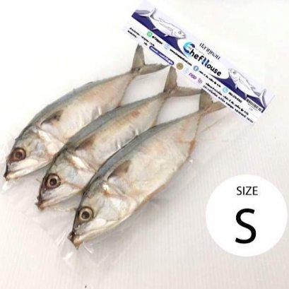 ปลาทูหอม