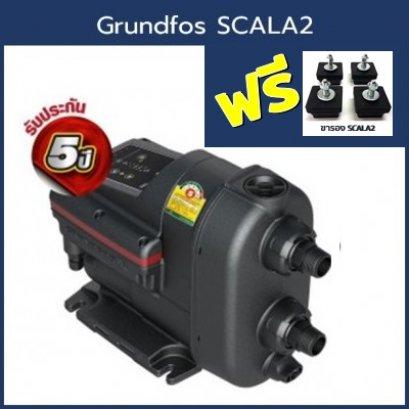 Grundfos SCALA2(แถมขารอง)