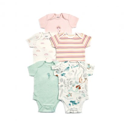 Girls Bodysuits - Mixed 5 Pack