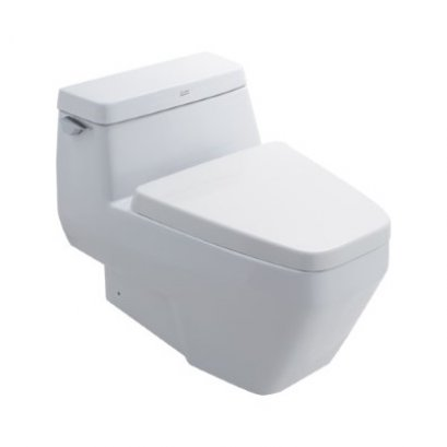 IDS Clear One Piece Toilet - TF-2030