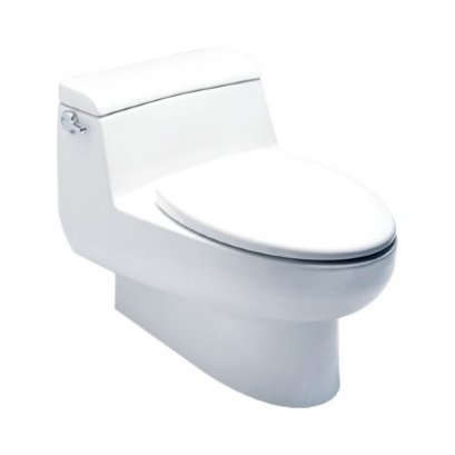 IDS Natural One Piece Toilet - TF-2050