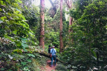 One Day Doi Suthep Temple & Monthathan Waterfall Trekking