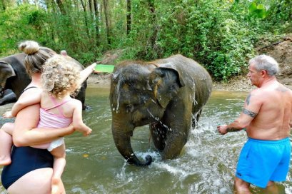 Elephant Bathing & Feeding