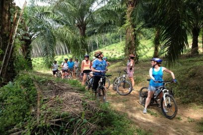 One Day Jungle Cycling Tour