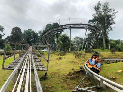 Pong Yang Jungle Coaster & Zipline