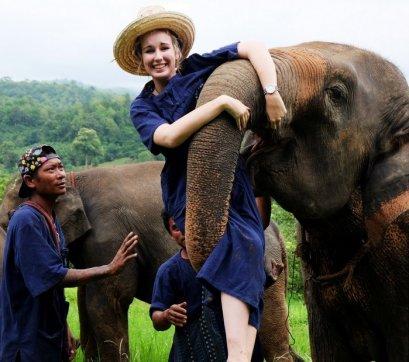 Elephant care project 2 days 1 night