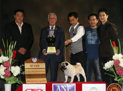 Central Plaza Pet Fair & Dog Show Championship