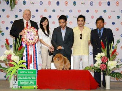 Pattaya Dog Show Festival 2011