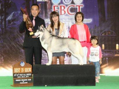 FBCT CHAMPIONSHIP SHOW 3/2011