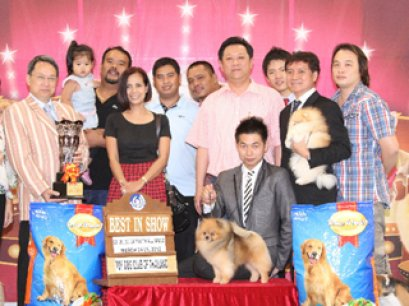 THE MALL TOY DOG CHAMPIONSHIP SHOW 1/2012(AB2)