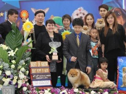 The Mall Toy Dog Championship Dog Show 1/2013(AB2)