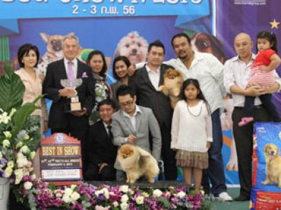 The Mall Toy Dog Championship Dog Show 1/2013(AB4)