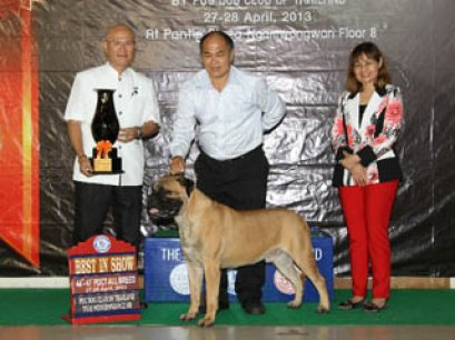 PANTIP PET EXPO & NATIONAL DOG SHOW 2013(AB2)