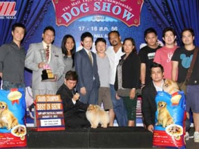 The Mall Toy Dog Championship Dog Show 5/2013(AB2)