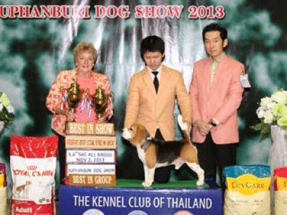Suphanburi Dog Show 2013(AB1)