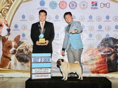 TAWANNA NGAMWONGWAN NATIONAL DOG SHOW 2014_AB2
