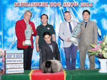 Suphanburi Dog Show 2014_AB4